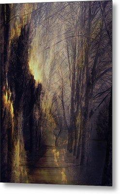 Quo Vadis  -  Memory Lane Metal Print