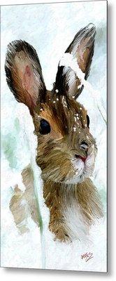 Rabbit In Snow Metal Print by James Shepherd