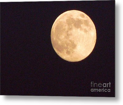 Metal Print featuring the photograph Rabbit In The Moon by Phyllis Kaltenbach