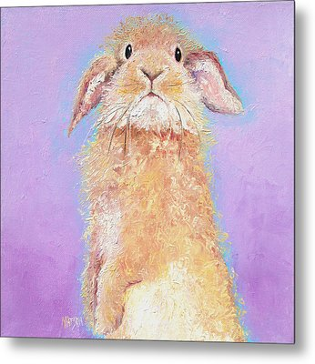 Rabbit Painting - Babu Metal Print