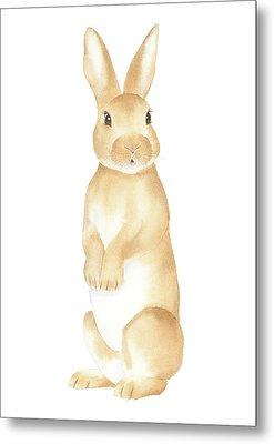 Metal Print featuring the painting Rabbit Watercolor by Taylan Apukovska