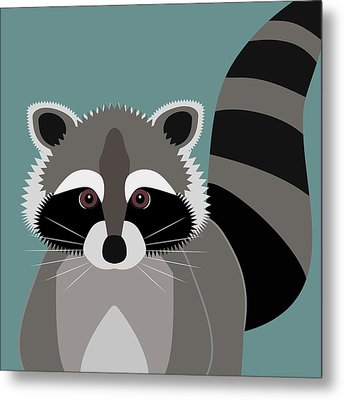 Raccoon Forest Bandit Metal Print