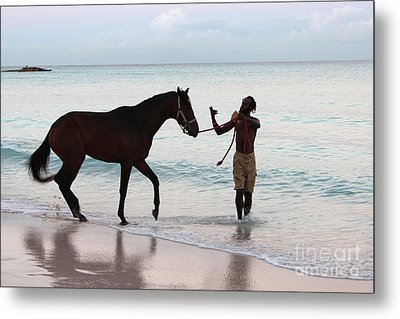 Race Horse And Groom 2 Metal Print by Barbara Marcus