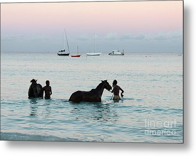 Race Horses And Grooms Metal Print by Barbara Marcus
