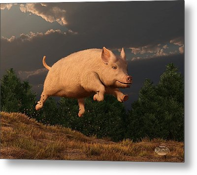 Racing Pig Metal Print by Daniel Eskridge