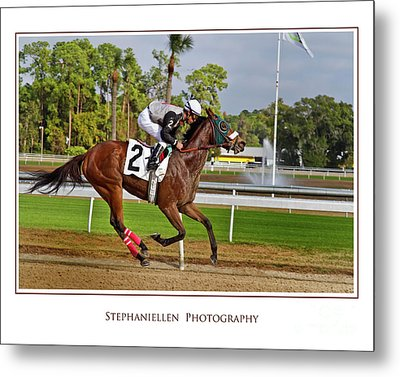 Racing To The Finish Metal Print by Stephanie Hayes