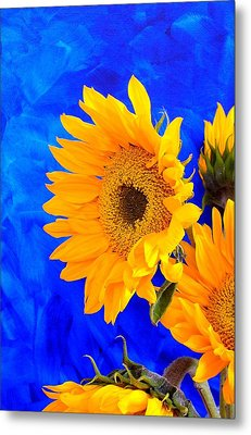 Metal Print featuring the photograph Radiance by Brenda Pressnall