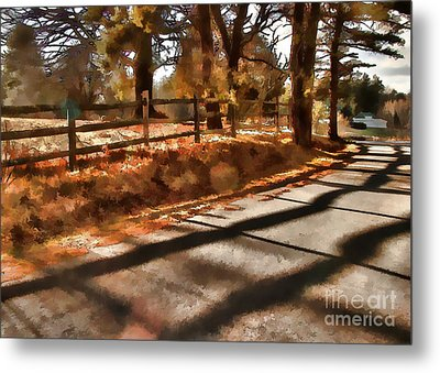 Metal Print featuring the photograph Radiating by Betsy Zimmerli