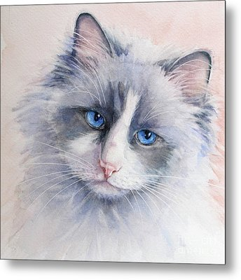 Metal Print featuring the painting Ragdoll Cat by Bonnie Rinier