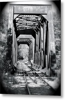 Metal Print featuring the photograph Railroad Bridge by Robin Regan