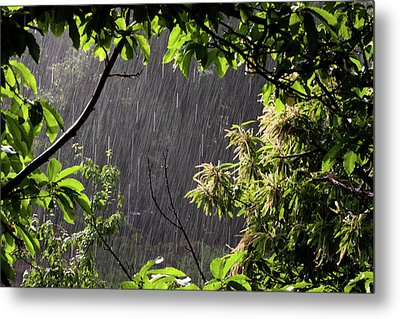 Rain Metal Print by Bruno Spagnolo
