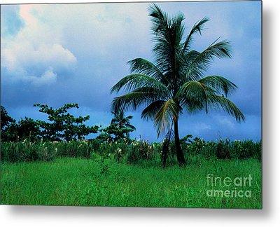 Rain Cloudsover Dominica Metal Print by Thomas R Fletcher