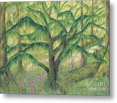 Rain Forest Washington State Metal Print by Vicki  Housel