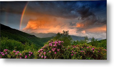 Rainbow And Rhododendrons On The Parkway Metal Print