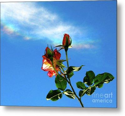 Rainbow Cloud And Sunlit Roses Metal Print