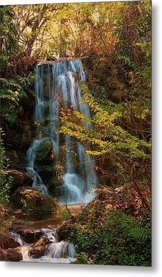Metal Print featuring the photograph Rainbow Springs Waterfall by Louis Ferreira