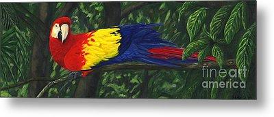 Rainforest Parrot Metal Print