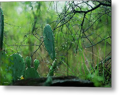 Rainy Day In Central Texas Metal Print by Travis Burgess