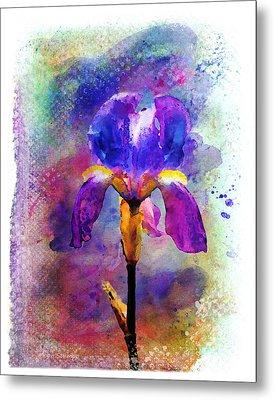 Rainy Weekend Iris Metal Print by Moon Stumpp