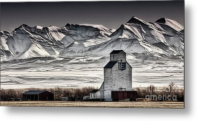 Ranchland Elevator Metal Print by Brad Allen Fine Art