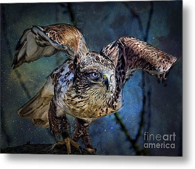 Raptor Hunter Metal Print