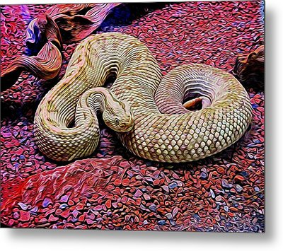 Rattlesnake In Abstract Metal Print