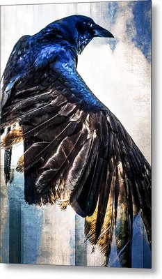 Metal Print featuring the photograph Raven Attitude by Carolyn Marshall
