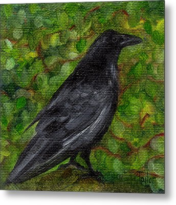 Raven In Wirevine Metal Print