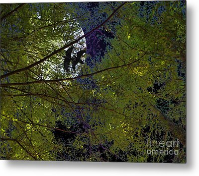 Ravens Of The Harvest Moon Metal Print by Wingsdomain Art and Photography