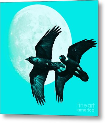 Ravens Of The Moon . Cyan Square Metal Print by Wingsdomain Art and Photography
