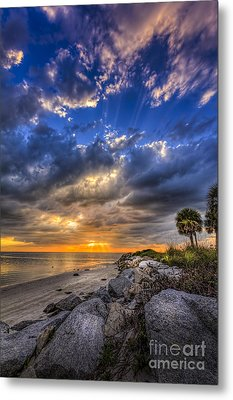 Raw Beauty Metal Print by Marvin Spates