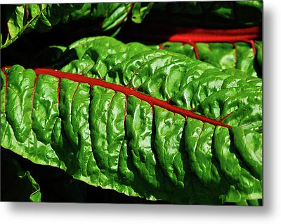 Metal Print featuring the photograph Raw Food by Harry Spitz