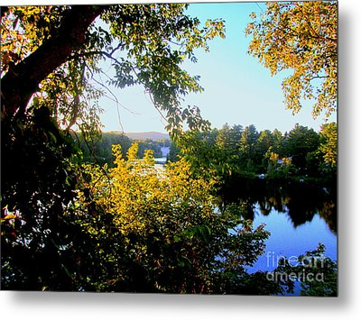 Metal Print featuring the photograph Rawdon by Elfriede Fulda