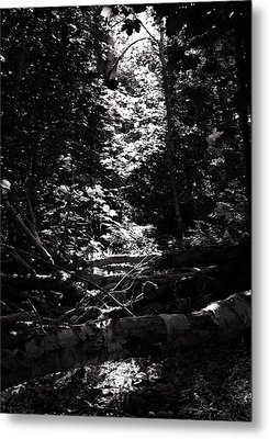 Ray Of Light Metal Print by Keith Elliott