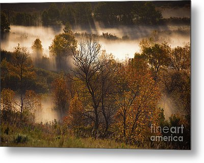 Rays Through The Autumn Valley Metal Print