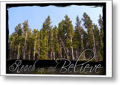 Metal Print featuring the photograph Reach Up And Believe by Susan Kinney