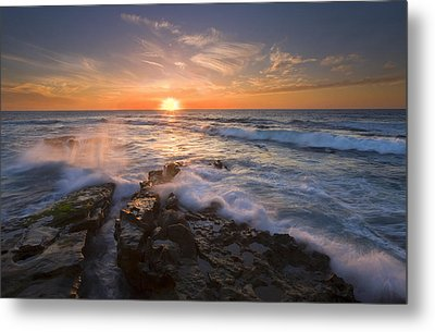 Reaching For The Sun Metal Print by Mike  Dawson