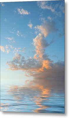 Reaching High Metal Print by Jerry McElroy