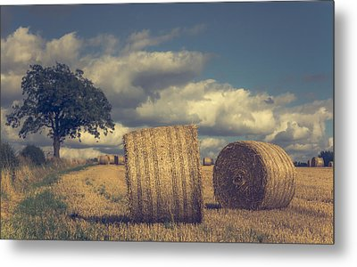 Reaching The End Of Summer Metal Print by Chris Fletcher