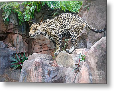 Ready For Attack Metal Print by Judy Kay