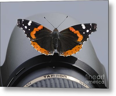 Metal Print featuring the photograph Ready For Takeoff by Andrea Silies