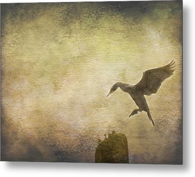 Ready To Land Metal Print by Rebecca Cozart
