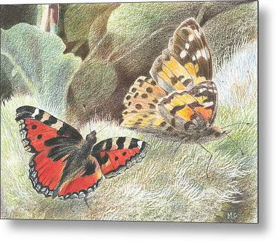 Red Admiral And A Painted Lady Metal Print by Maureen Carter