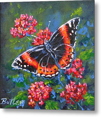 Red Admiral Metal Print by Gail Butler
