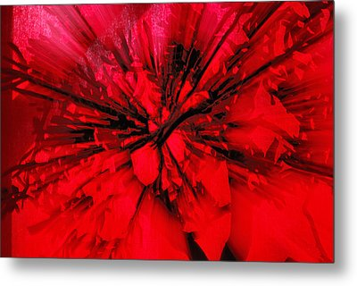 Metal Print featuring the photograph Red And Black Explosion by Susan Capuano