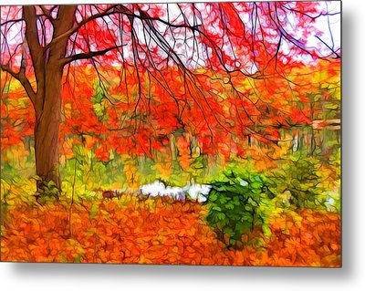 Red And Orange Metal Print by Lilia D
