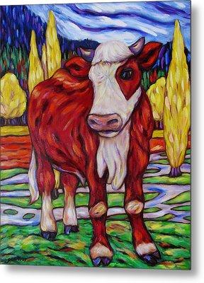Red And White Bull Calf Metal Print