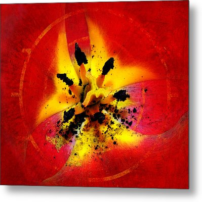 Red And Yellow Flower Metal Print by Judi Saunders