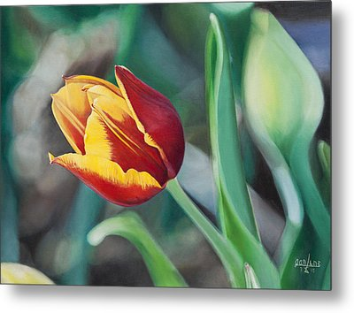 Metal Print featuring the painting Red And Yellow Tulip by Joshua Martin