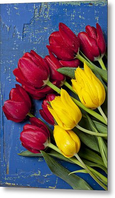 Red And Yellow Tulips Metal Print by Garry Gay